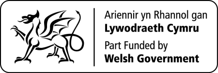 Welsh Government part funded logo
